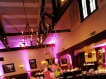 Hoa trang trí tiệc cưới với tông đen và hồng cá tính