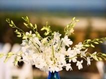 Hoa trang trí tiệc cưới giản dị với lan trắng - Marry