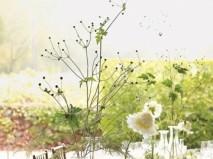Hoa trang trí tiệc cưới kết hợp hoa tươi và cành khô - Marry