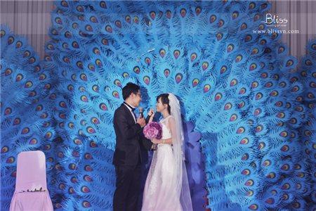 Kế hoạch cưới hoàn hảo 2015