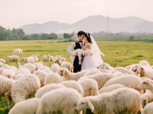 Chụp ảnh cưới đẹp hoàn hảo với chi phí tiết kiệm nhất