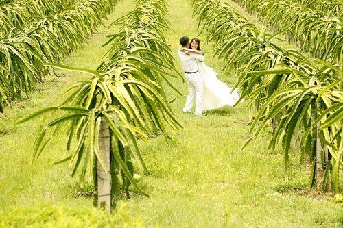 Thiên đường các khu Resort – Nơi lý tưởng để có bộ ảnh cưới đẹp