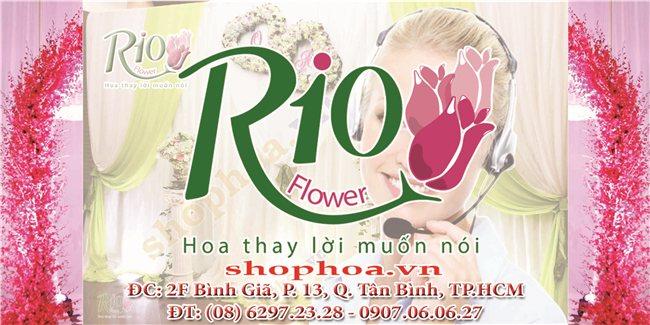 Shop hoa tươi Rio
