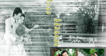 Áo cưới Lê Minh