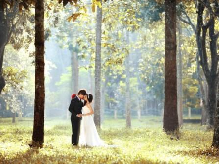 Áo cưới Mai Vàng