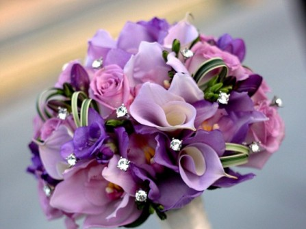 BD Florist