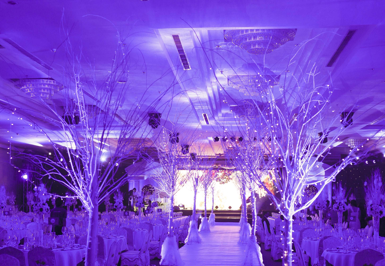 Jenny Wedding