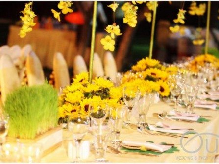 OUI Professional Wedding and Event Planner