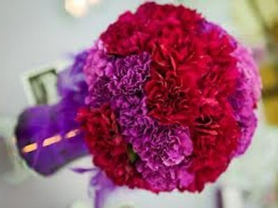Shop hoa tươi Aura