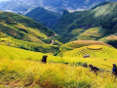 Việt Nam - Vietnamtourism